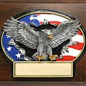 eagle-with-american-flag-3d-oval-on-7x9-plaqu-1392411113-jpg