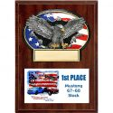 eagle-with-american-flag-oval-on-a-9x12-plaqu-1392751643-jpg
