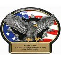 eagle-and-american-flag-3d-oval-trophy-jpg